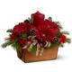 """4.4.18 Новогодняя композиция из живых цветов и ароматной ели  """"Рождество """" Базовая цена..."""